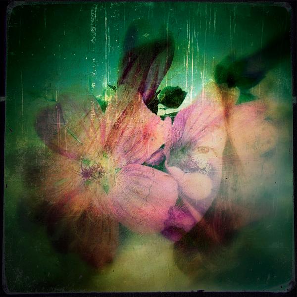 flowerme1