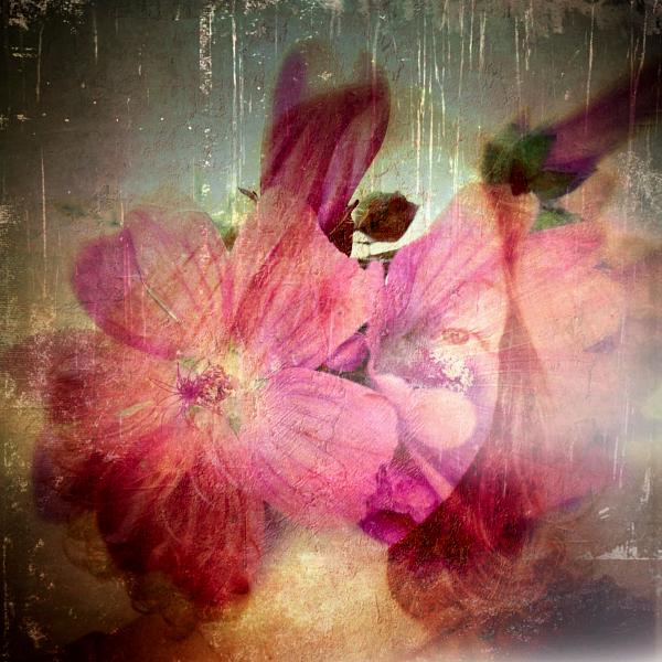 flowerme2